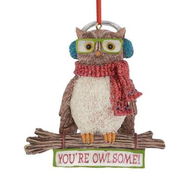 You're Owlsome Owl Ornament