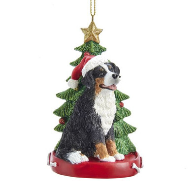 "Bernese Mountain Dog with Christmas Tree Ornament, 4 1/4"", KAE0369BM"