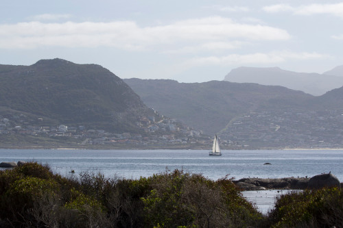 Cape Peninsula Sailboat