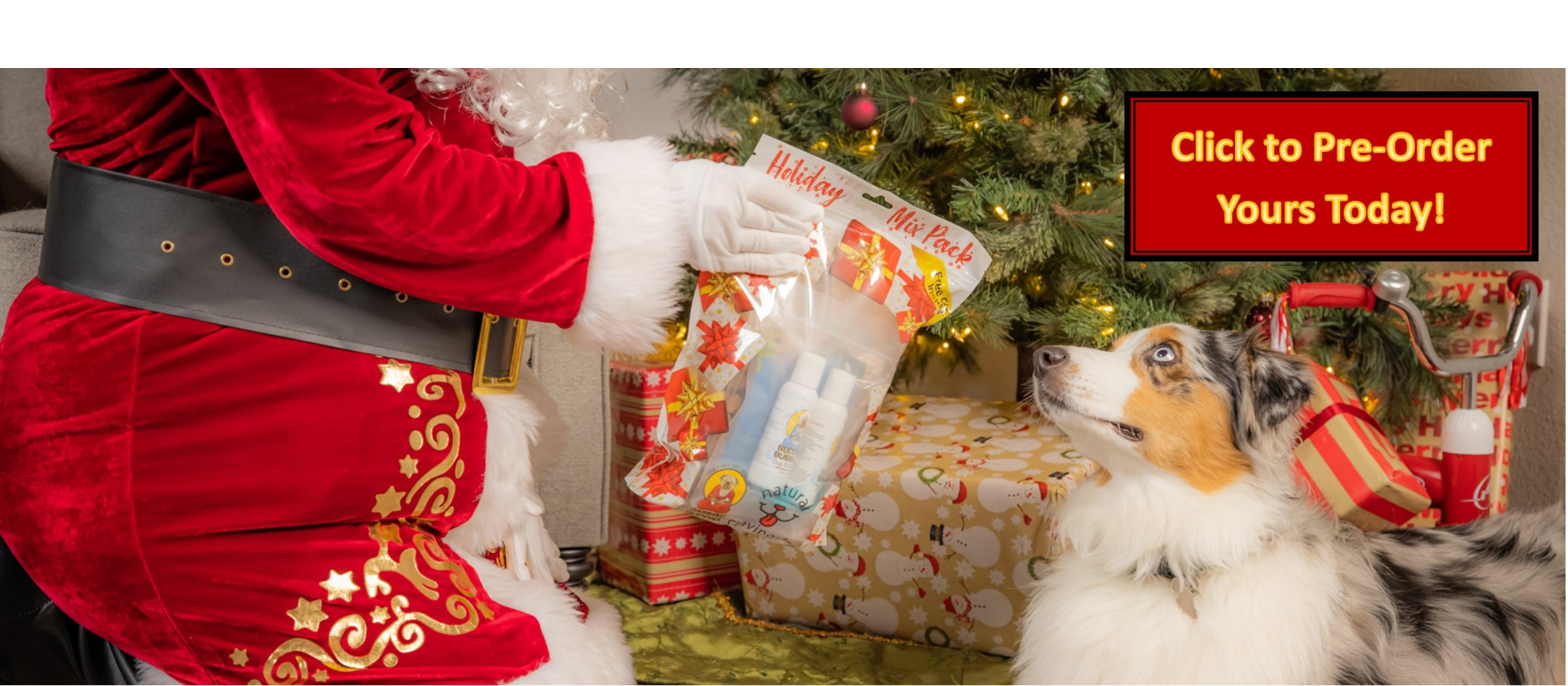 Santa Claus Giving Dog a Natural Cravings Holiday Mix Pack Gift for Dogs