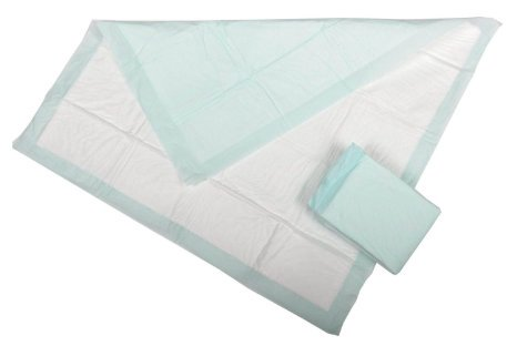 """Economy Disposable Underpad, Heavy Absorbency, 1801, 17 X 23""""- Case of 300"""
