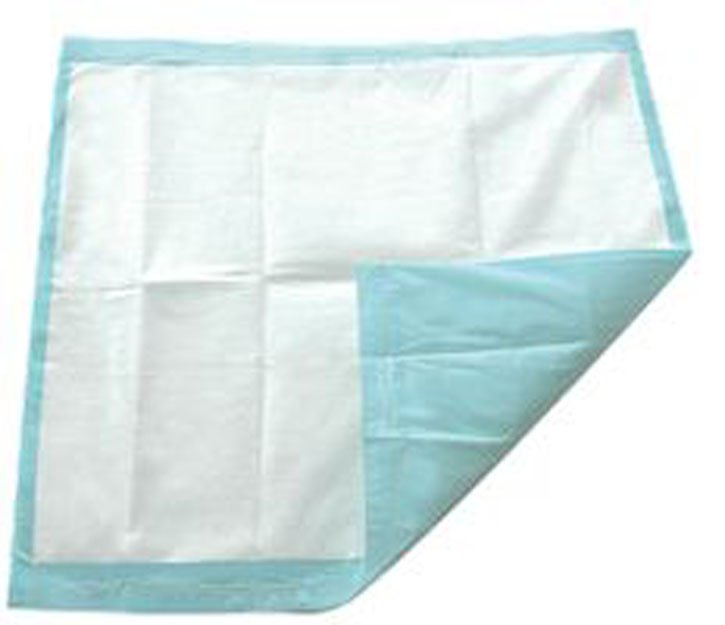"""TotalDry Disposable Underpad, Light Absorbency, SP113062, 30 X 30"""" - Bag of 10"""