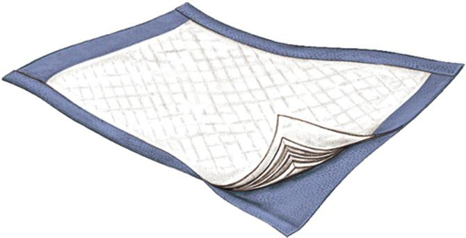 """Passport Disposable Underpad, Moderate Absorbency, 3834, 22 X 35"""" - Case of 60"""