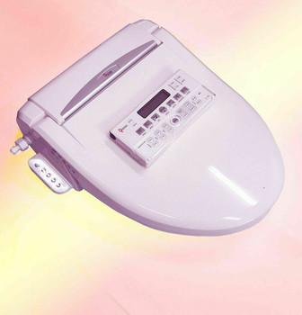 Premium Remote Electric toilet Bidet Twin Nozzle Washlet Sprayer Large