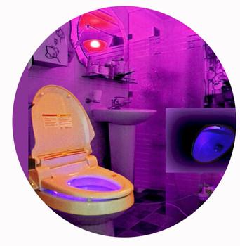 Premium Remote Electric toilet Bidet Twin Nozzle Washlet Sprayer Small