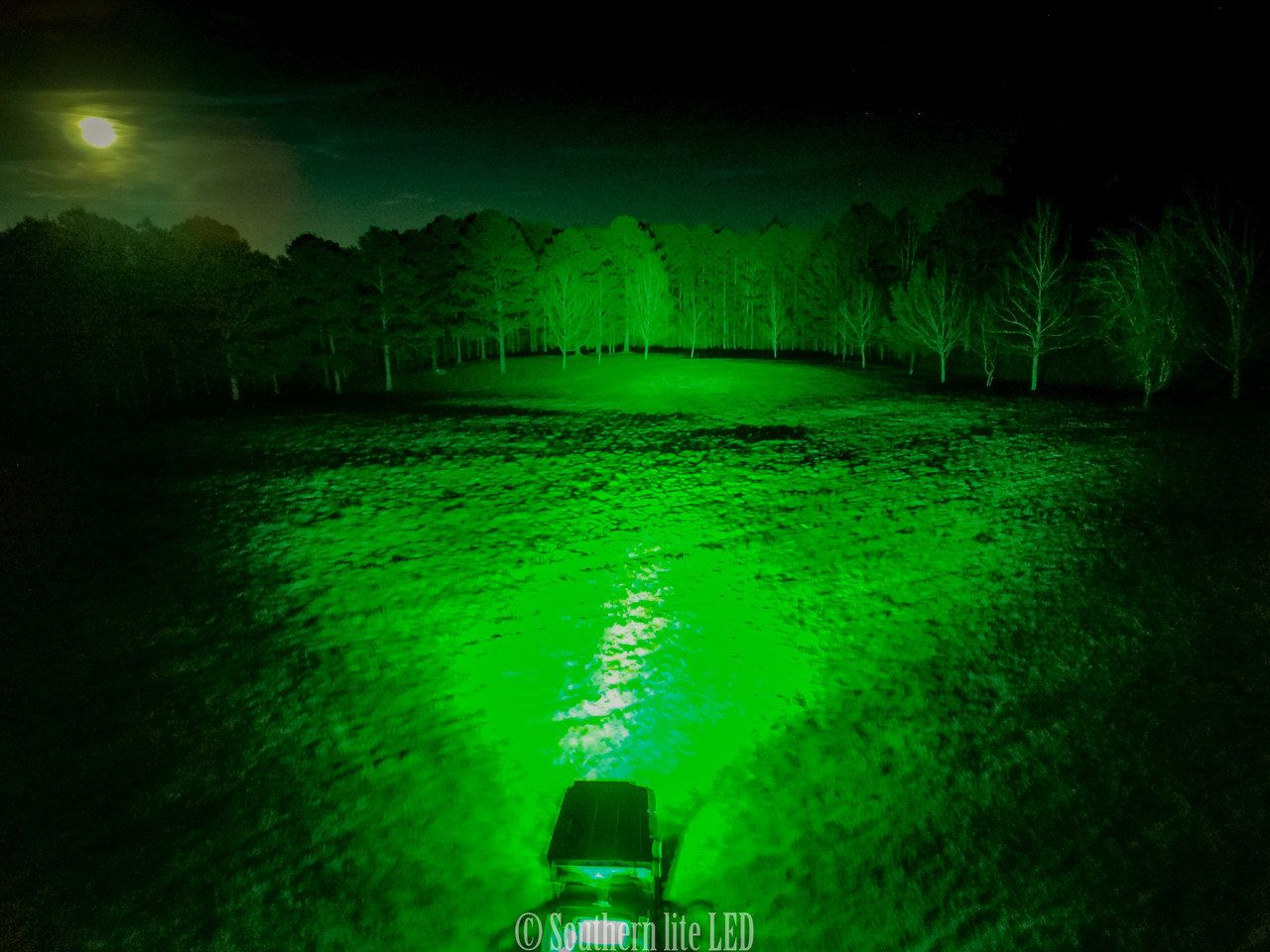 GREEN or WHITE LIGHT