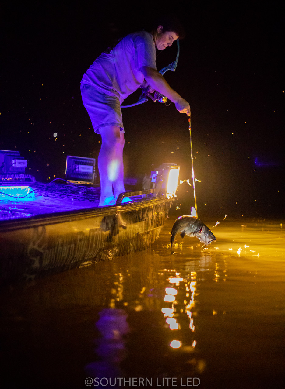 LED BOWFISHING PACKAGE