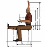 The Upright Seated Posture: Conventional Wisdom vs. Current Thinking