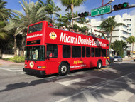 Expert Guides Add a Dash of Flair to Miami Bus Tours