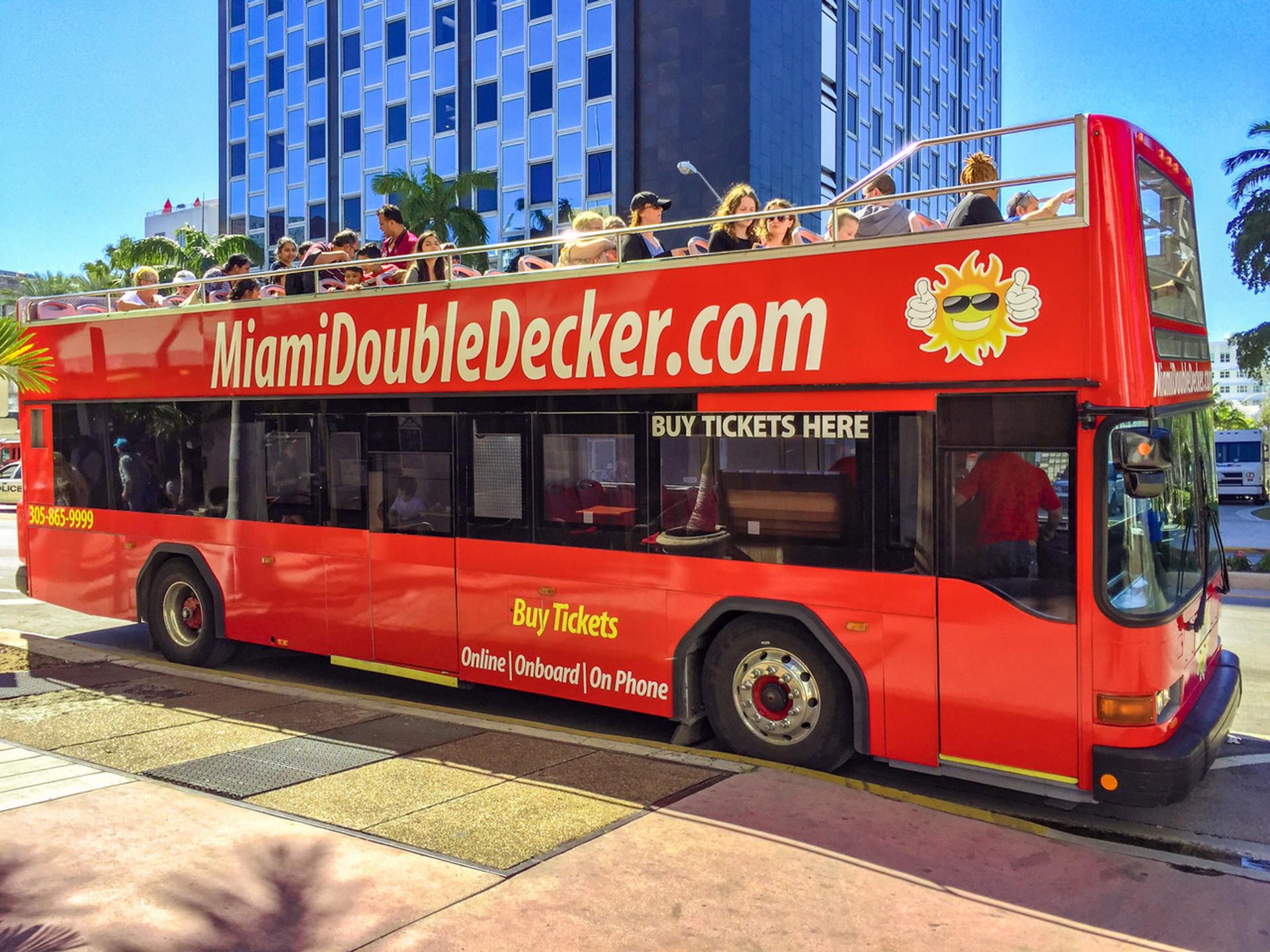 miami city tour + miami boat tour + everglades tour