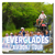 The Everglades Airboat Tours is one of the best ways to experience the natural beauty of Florida.  You never know what animal may be lurking around the the next turn in the sawgrass.