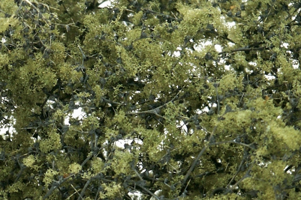 Olive Green Fine Leaf Foliage F1133