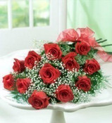 Presentation style wrapped Roses