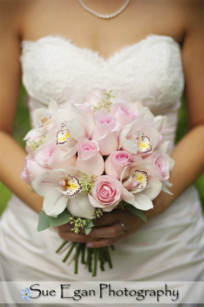 Sue Egan Photography Pink Roses and Cream Cymbidium Orchids