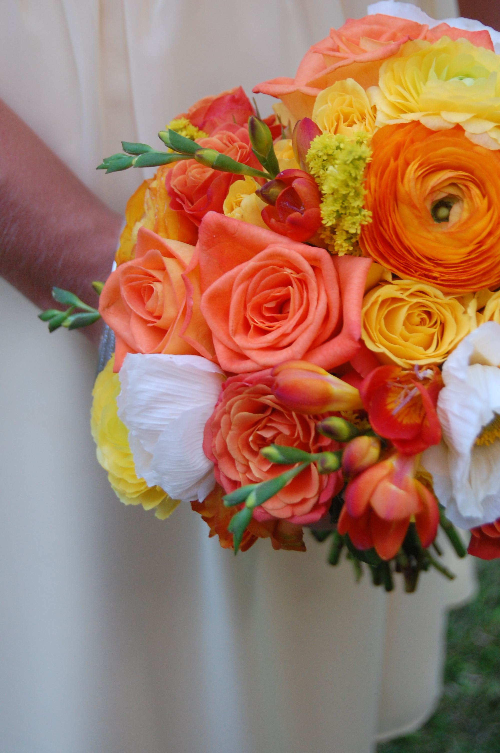 Ranunculus, Roses, Poppies, Freesia