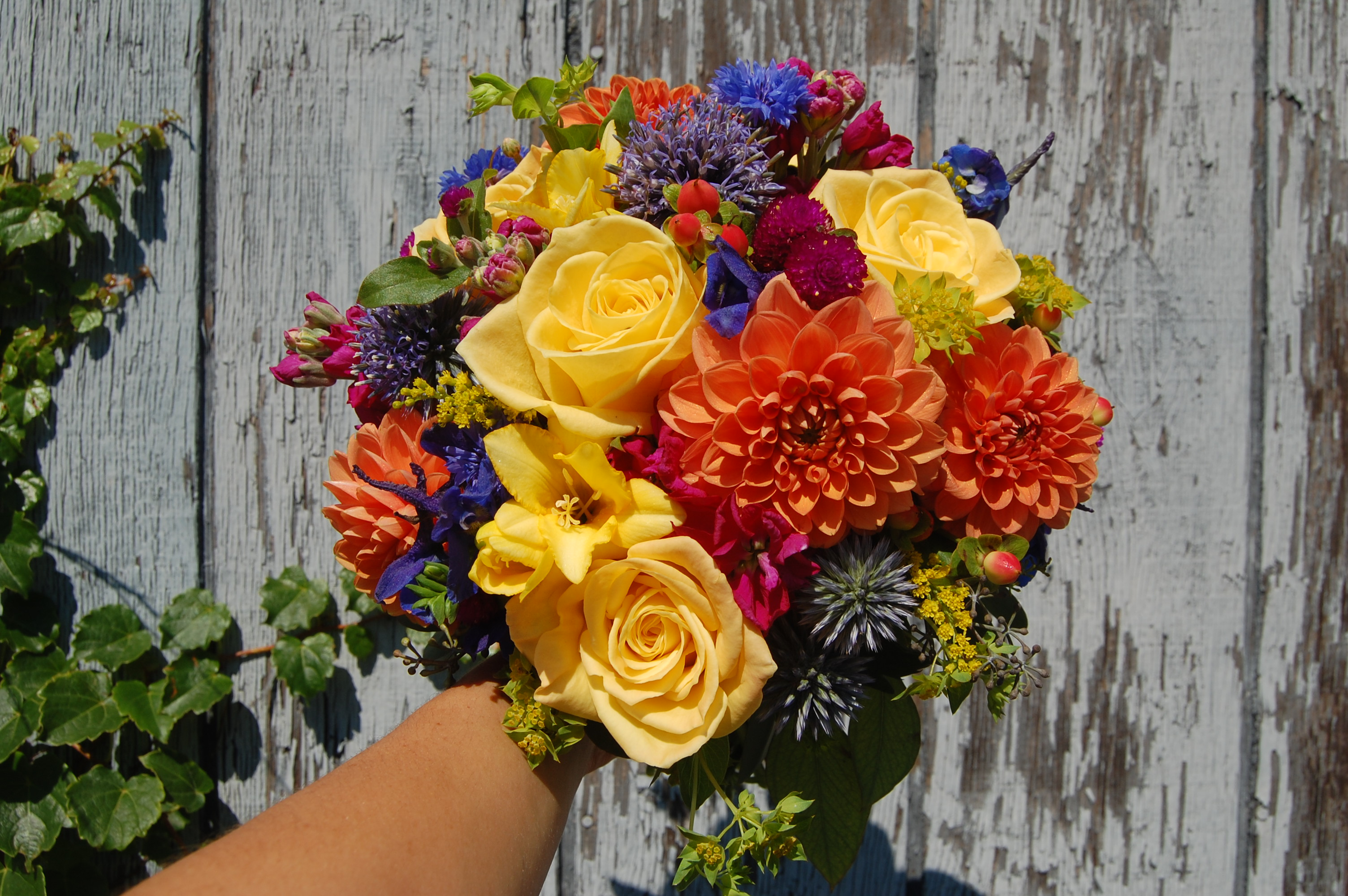 roses, dahlias, thistle, freesia
