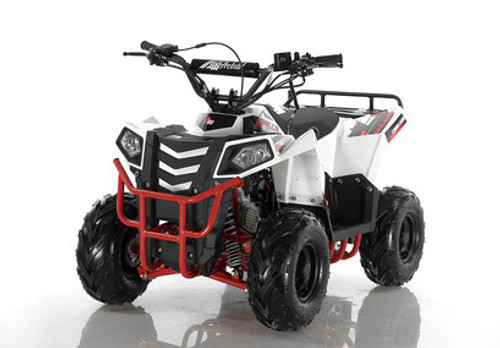Apollo Commander Mini 110cc  AUTOMATIC w/REVERSE ATV - Free Shipping & Fully Assembled/Tested