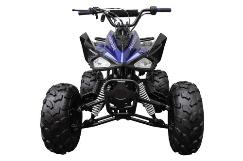 Orion ATV 125cc Sport Lite- Free Shipping & Fully Assembled/Tested
