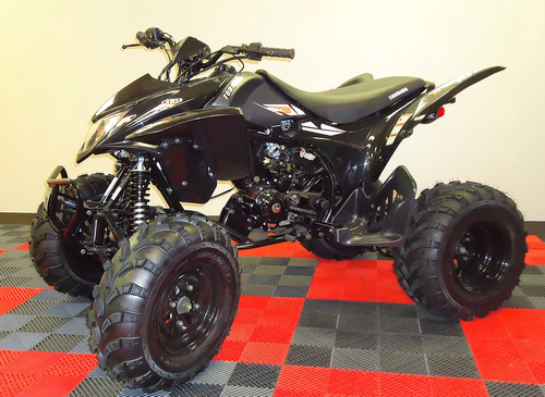 Orion ATV 250cc Sport - Free Shipping & Fully Assembled/Tested
