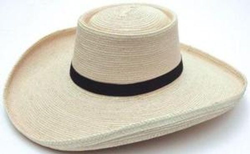 SunBody Palm Sam Houston Cowboy Western Hat