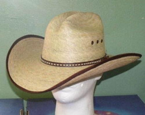 Jason Aldean Hicktown Palm Cowboy Hat
