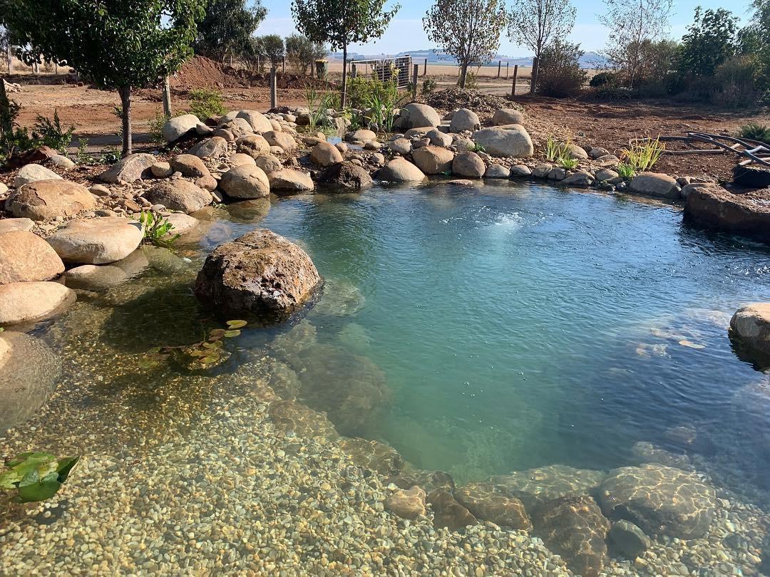 Bells Watergardens Recreation Pond Workshop