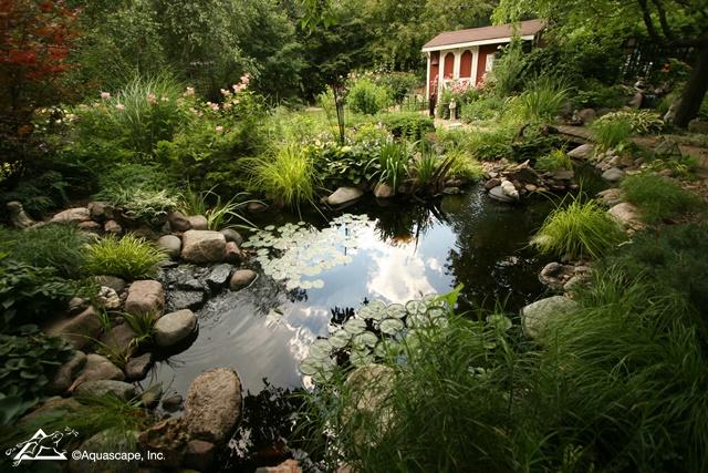 A Stunning Garden Pond Takes Centre Stage