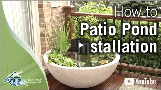 How To Create an Easy Container Water Feature