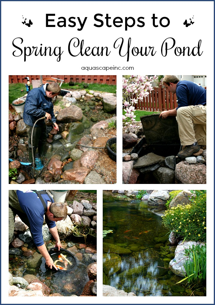 Successfully Clean Your Pond For Spring