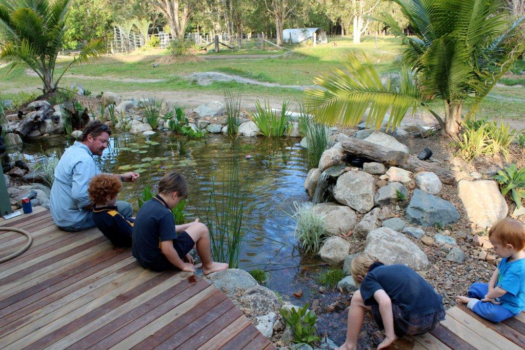 Beautiful Ponds and Waterfalls for Backyard Living