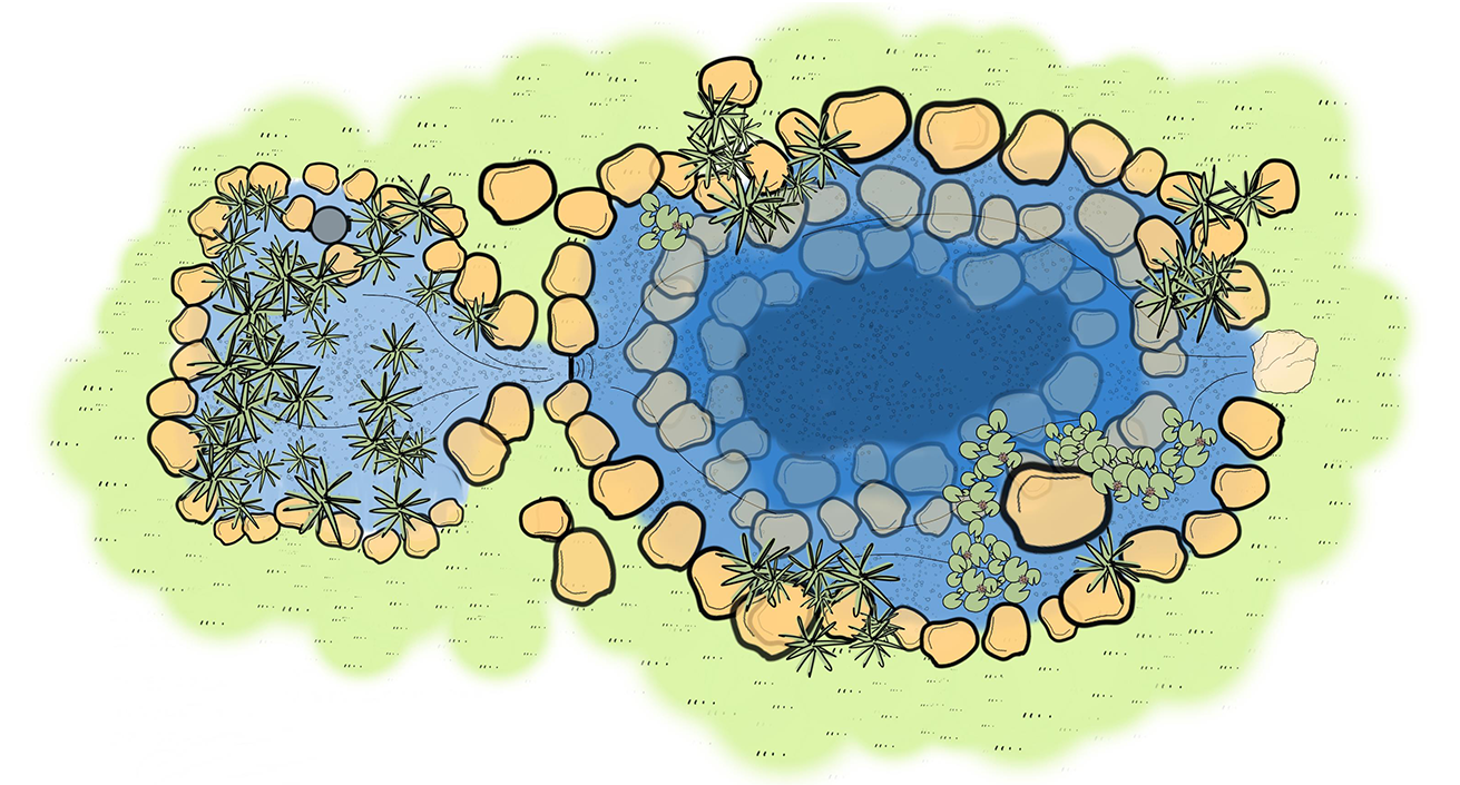 Recreation Ponds