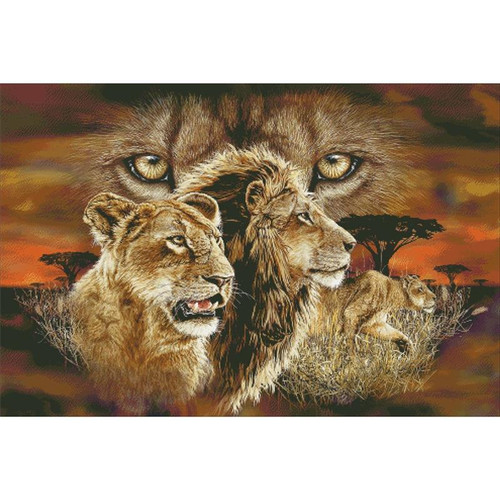 10 Lions / Charting Creations