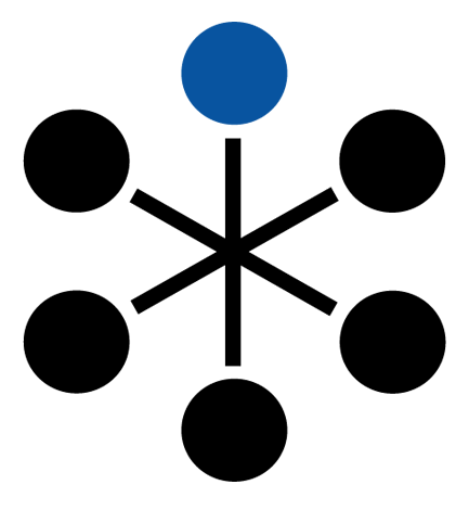 pacer group logosnowflake