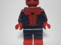Arachnid Hero - DISCOUNT - D9