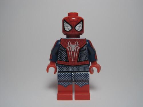 Arachnid Hero - DISCOUNT - D6