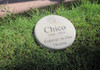 "Personalized Engraved Pet Memorial  Stone 7.5"" Diameter 'forever in Our Hearts Single Paw'"