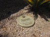 """Personalized Engraved Pet Memorial  Stone 11"""" Diameter 'Forever in Our Memories'"""