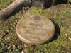 "Personalized Engraved Pet Memorial  Stone 11"" Diameter 'Love Never Leaves'"