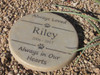 """Personalized Engraved Pet Memorial  Stone 11"""" Diameter 'Always Loved / Always in Our Hearts"""
