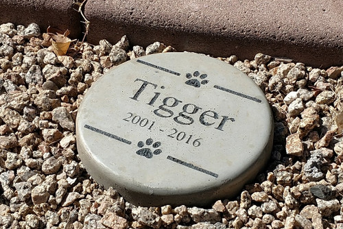 "Personalized Engraved Pet Memorial  Stone 7.5"" Diameter"
