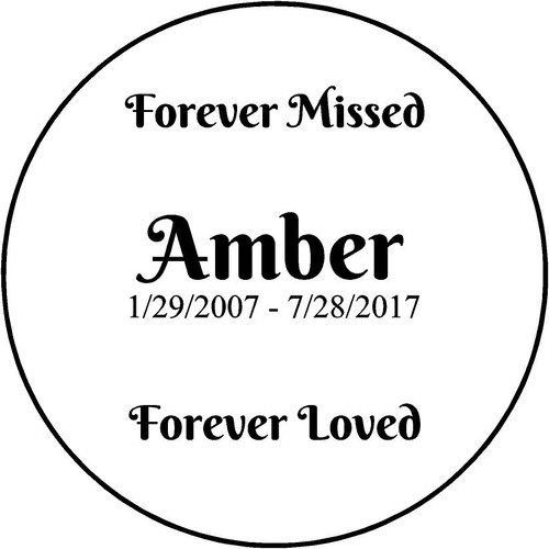 "Personalized Engraved  Stone 11"" Diameter PSS82_FMFL_Amber"