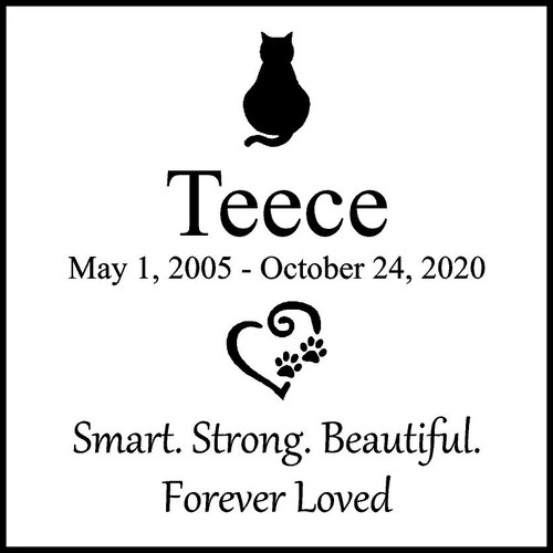 "Memories Step Stone 11.5""x11.5"" Teece_custom_2"