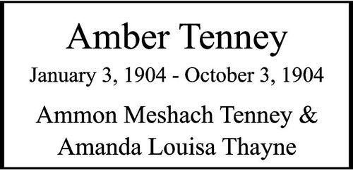 "Copy of Personalized Engraved Memorial  Stone 11.5 x 5.5"" Amber Tenney"