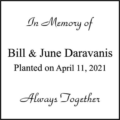 """Memories Step Stone 11.5""""x11.5"""" Bill & June Daravanis"""