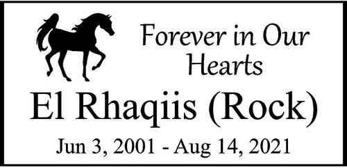 "Memories Step Stone 11.5""x5.5"" El Rhaqiis Rock"