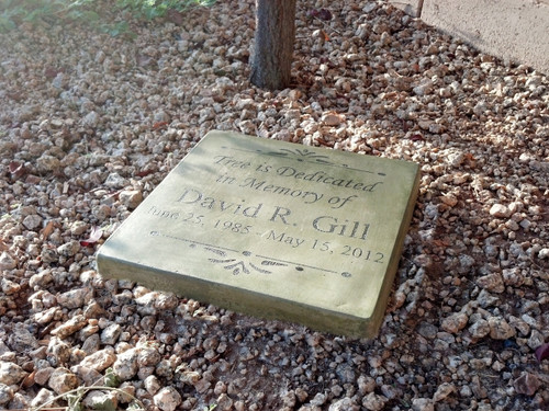 """Personalized Engraved Memorial Garden Stone 11.5""""x11.5""""  'Tree is dedicated in Memory of'"""