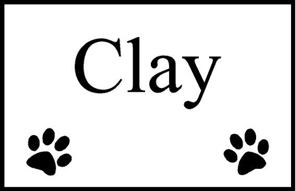 """Personalized Engraved Pet Memorial  Stone 8.5""""x5.5""""  Clay_custom"""