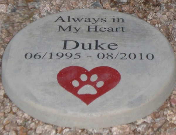 Personalized Engraved Pet Memorial  Stone 11' Diameter 'Always in My Heart'