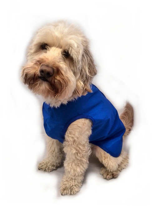Unlined step in lightweight waterproof dog coat blue