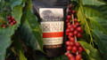 Hawaiian Cascara tea online ordering organic